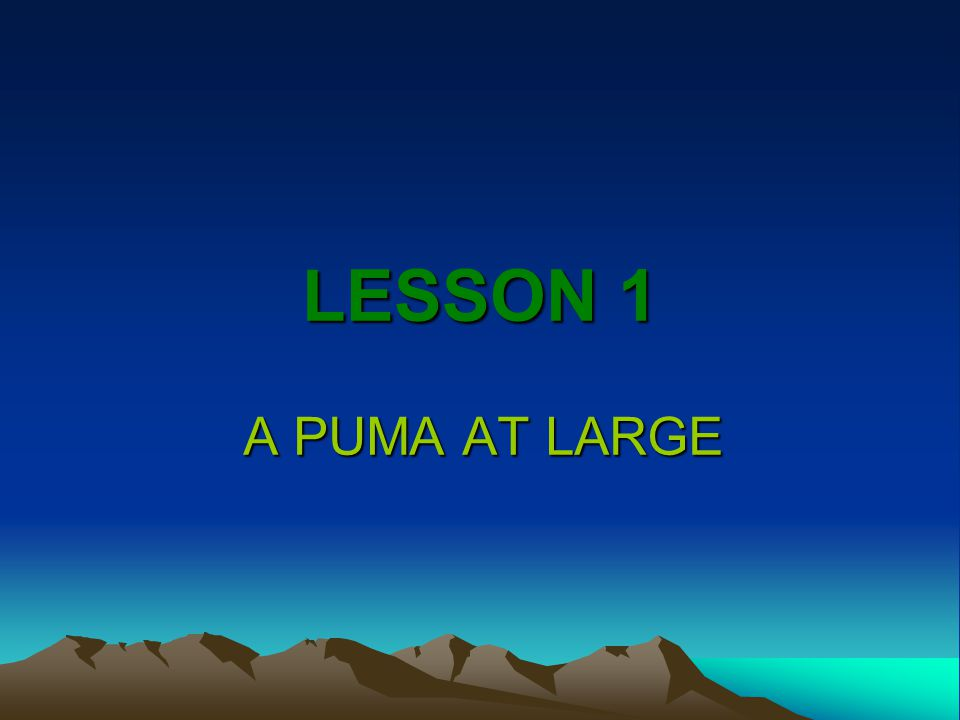 LESSON 1 A PUMA AT LARGE