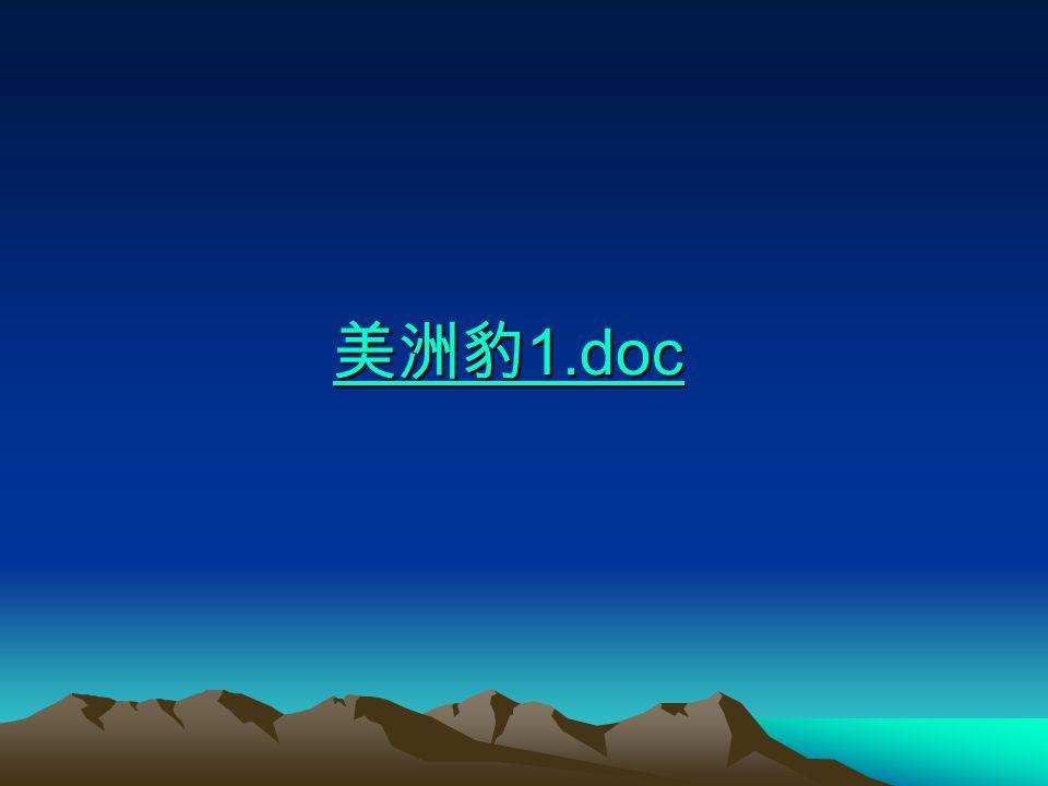 美洲豹1.doc