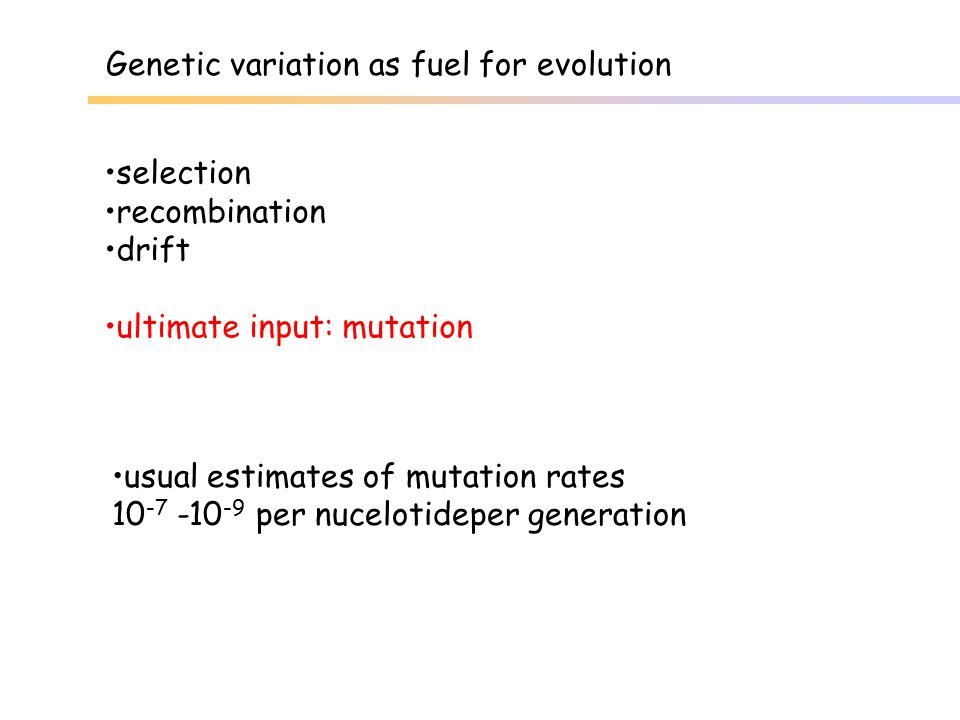 Genetic variation as fuel for evolution