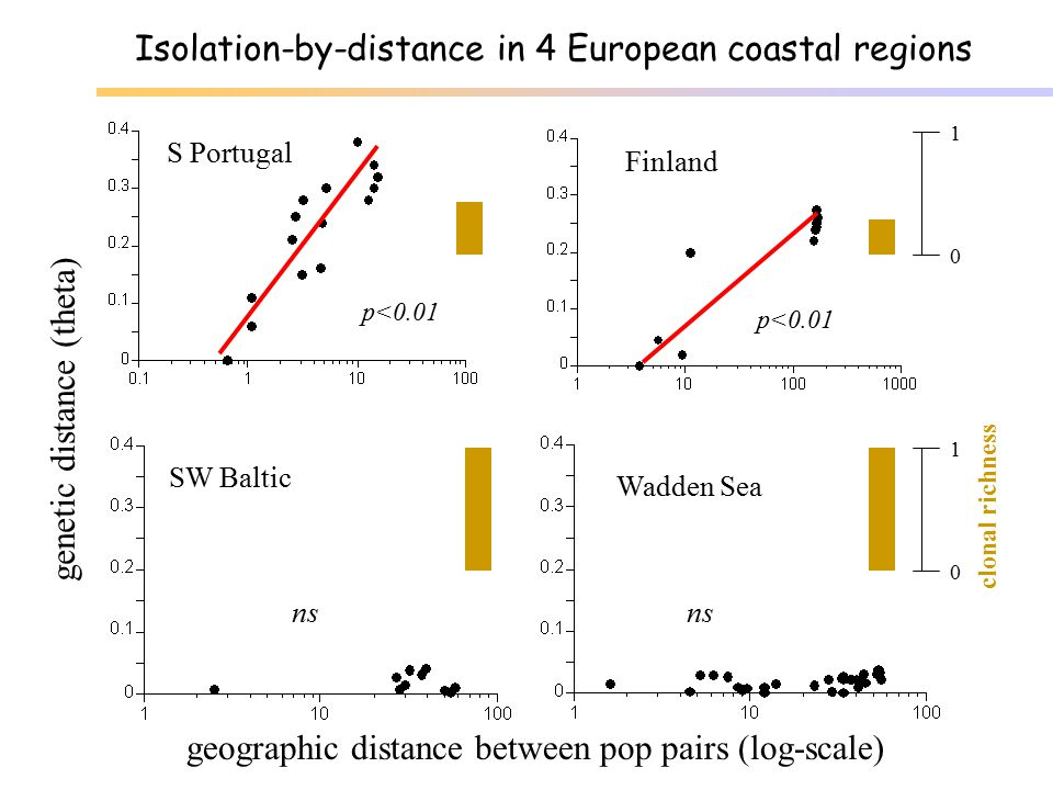 Isolation-by-distance in 4 European coastal regions