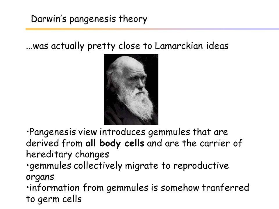 Darwin's pangenesis theory