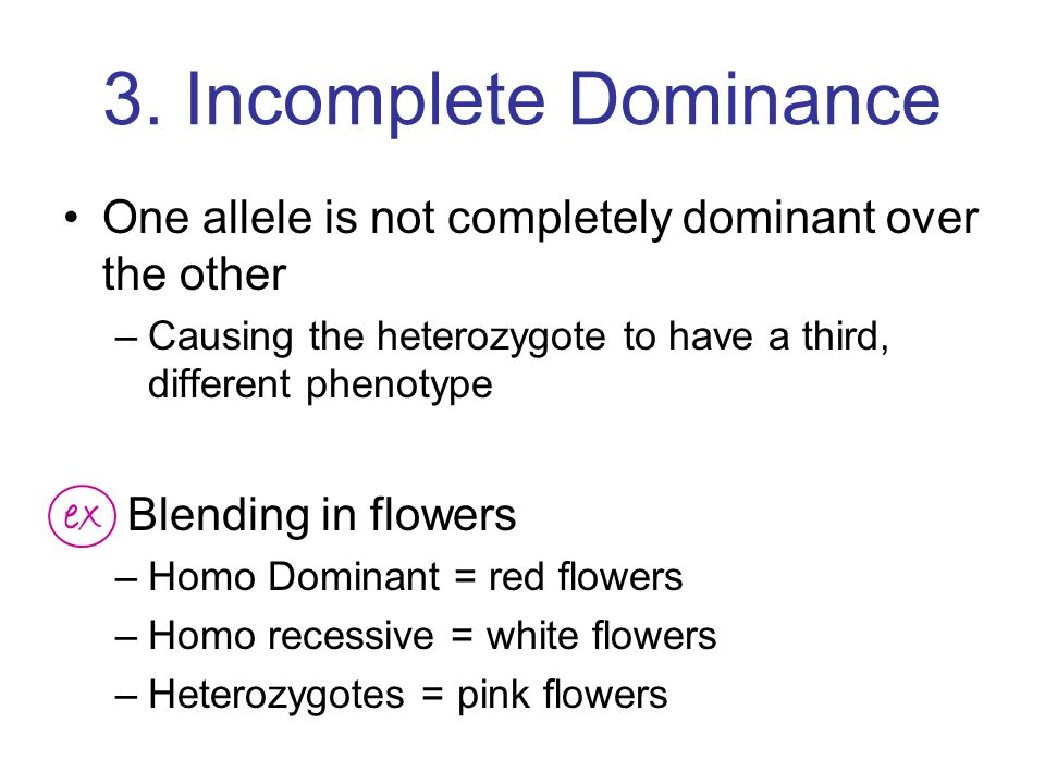 3. Incomplete Dominance One allele is not completely dominant over the other. Causing the heterozygote to have a third, different phenotype.