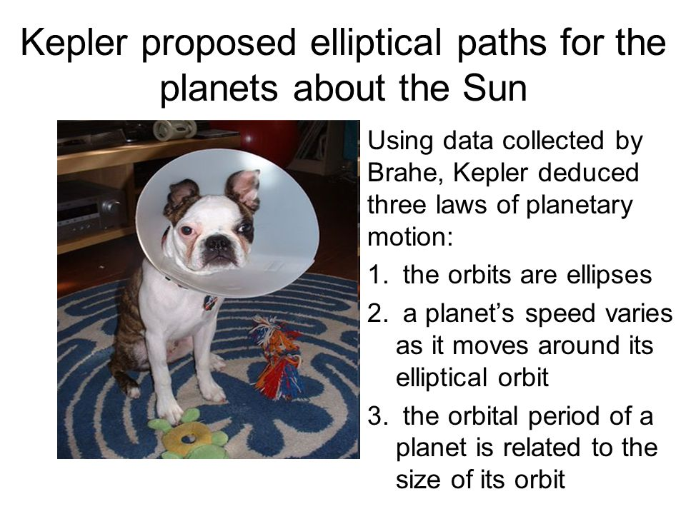 Kepler proposed elliptical paths for the planets about the Sun