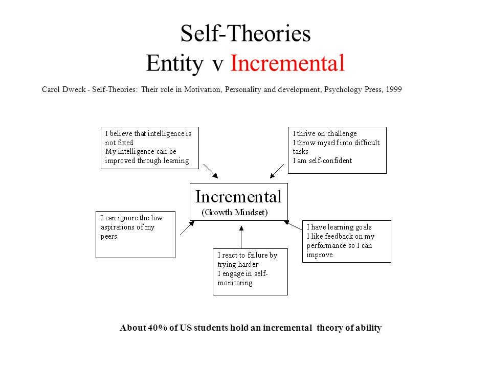 Self-Theories Entity v Incremental