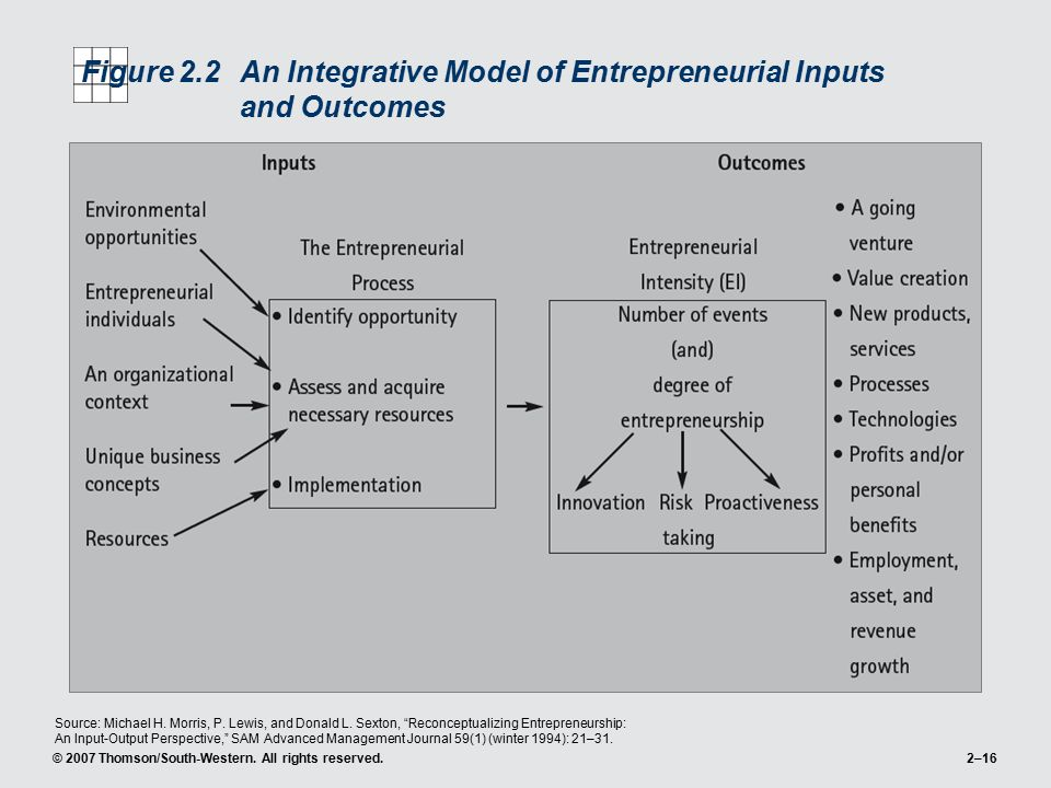 Figure 2.2 An Integrative Model of Entrepreneurial Inputs and Outcomes
