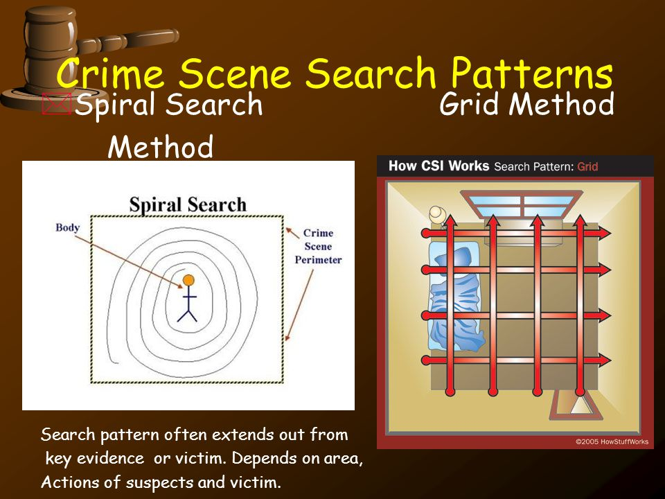 Crime Scene Search Patterns