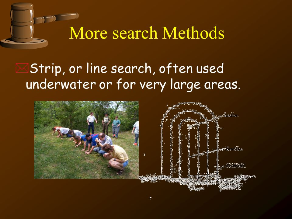 More search Methods Strip, or line search, often used underwater or for very large areas.