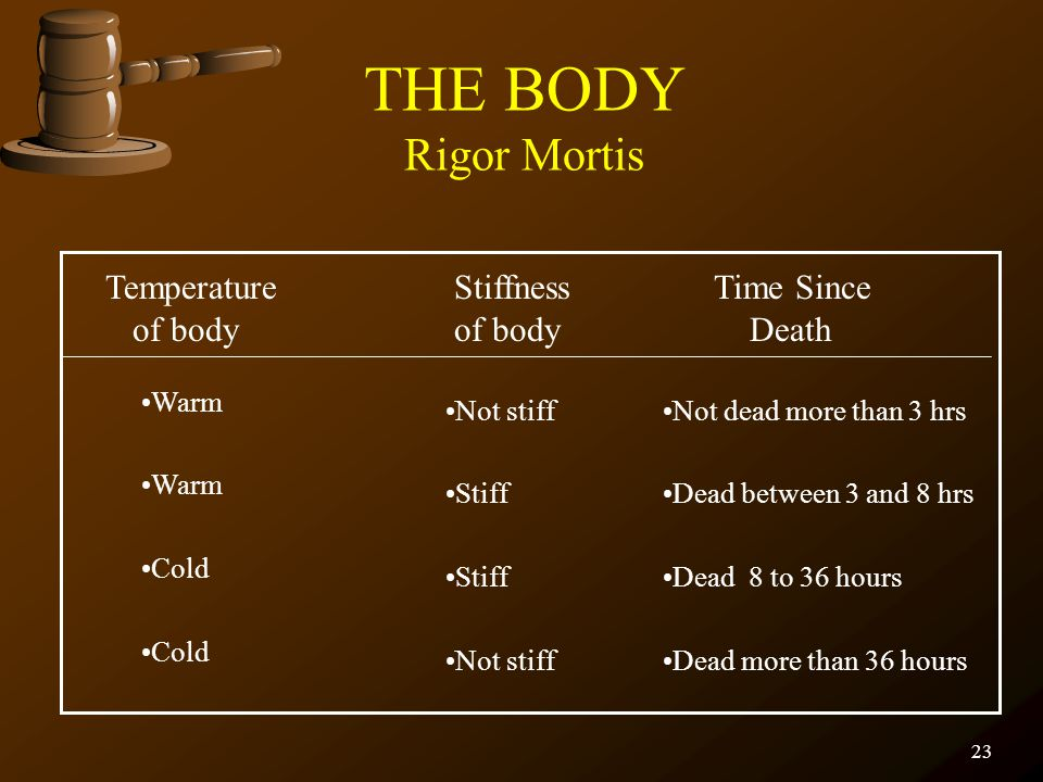 THE BODY Rigor Mortis Temperature Stiffness Time Since