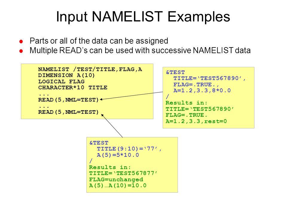 Input NAMELIST Examples
