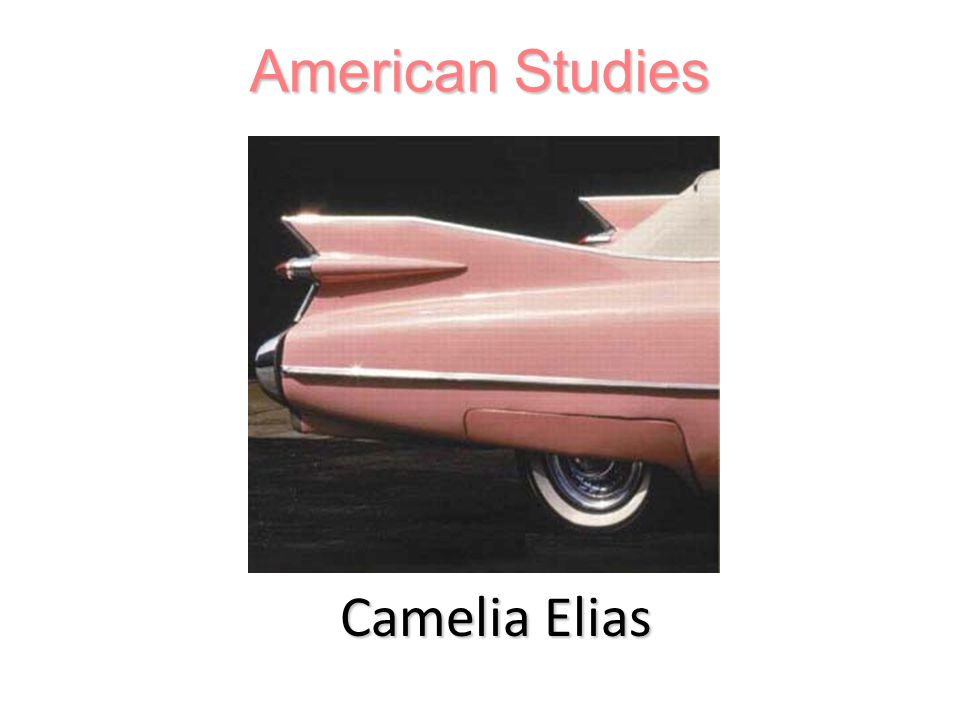 American Studies Camelia Elias