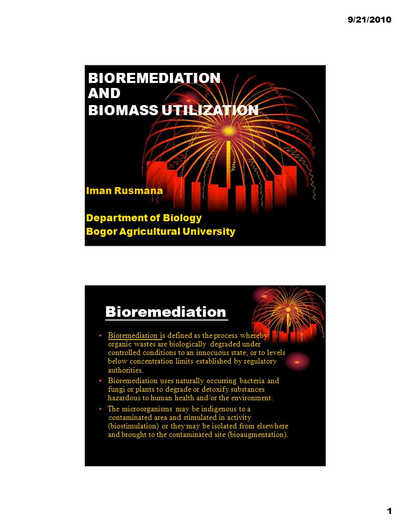 Bioremediation BIOREMEDIATION AND BIOMASS UTILIZATION Iman Rusmana