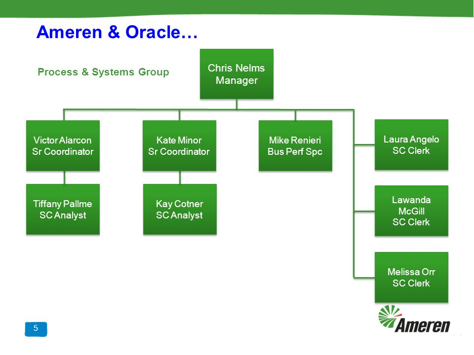 Ameren & Oracle… Chris Nelms Manager Process & Systems Group