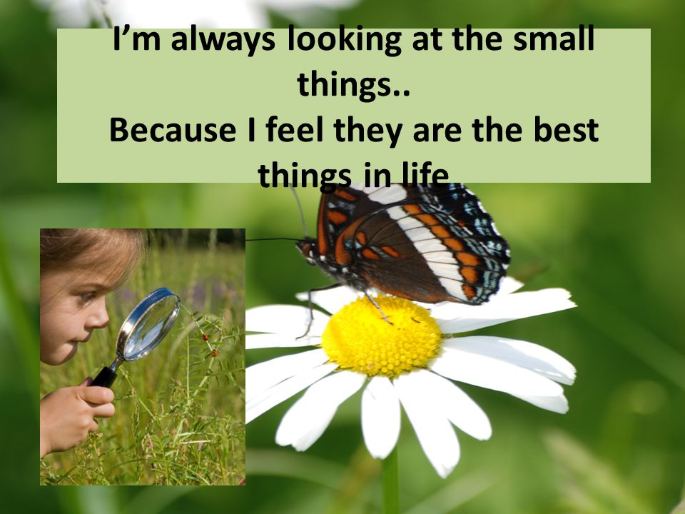 I'm always looking at the small things