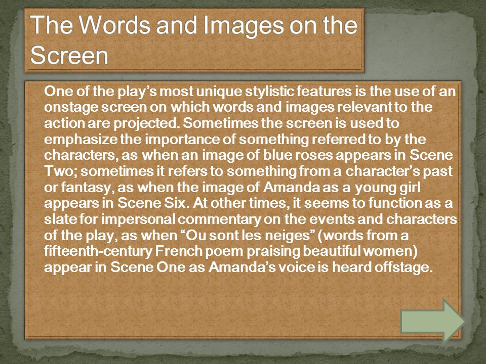 The Words and Images on the Screen