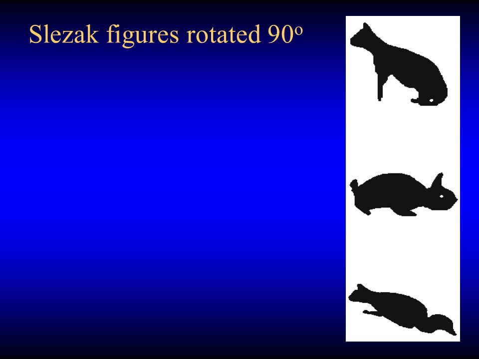 Slezak figures rotated 90o