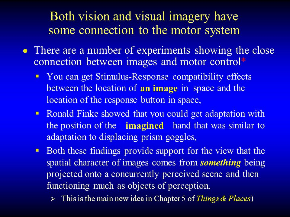 Both vision and visual imagery have some connection to the motor system