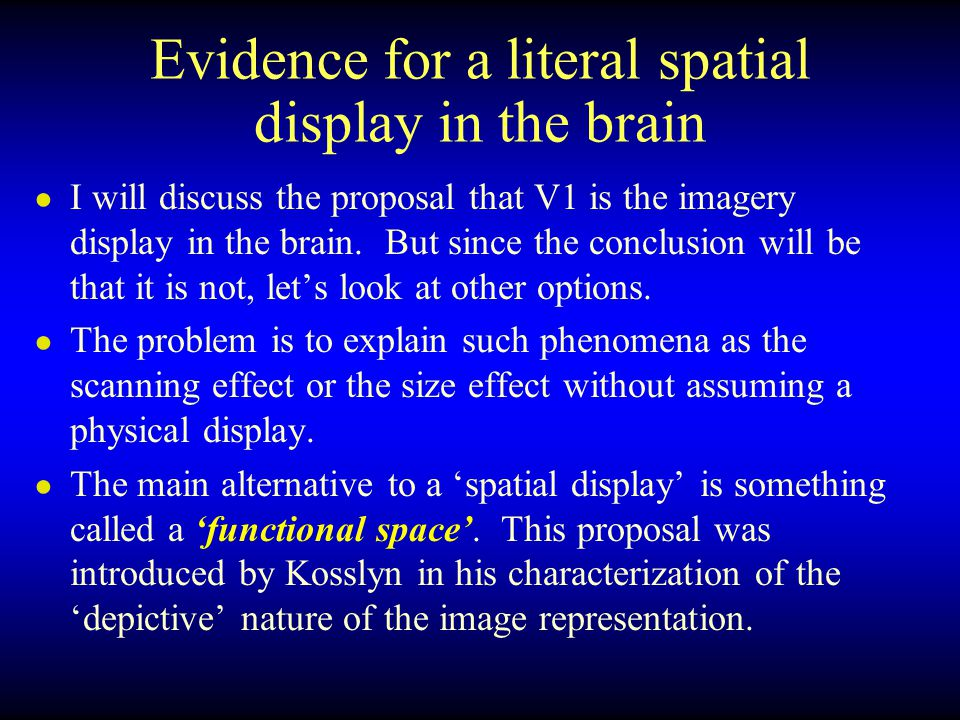 Evidence for a literal spatial display in the brain