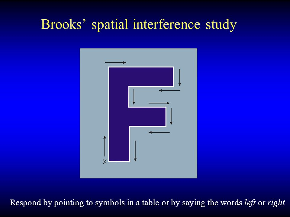 Brooks' spatial interference study