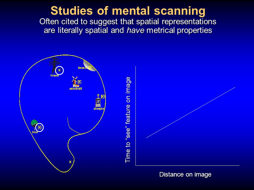 Studies of mental scanning Often cited to suggest that spatial representations are literally spatial and have metrical properties