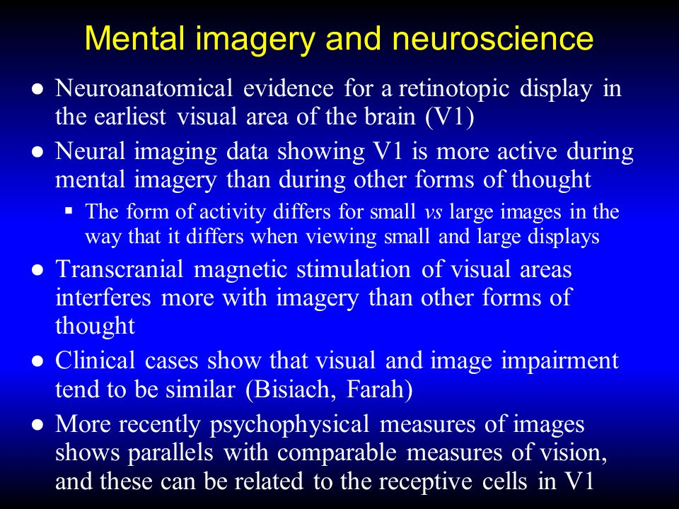 Mental imagery and neuroscience