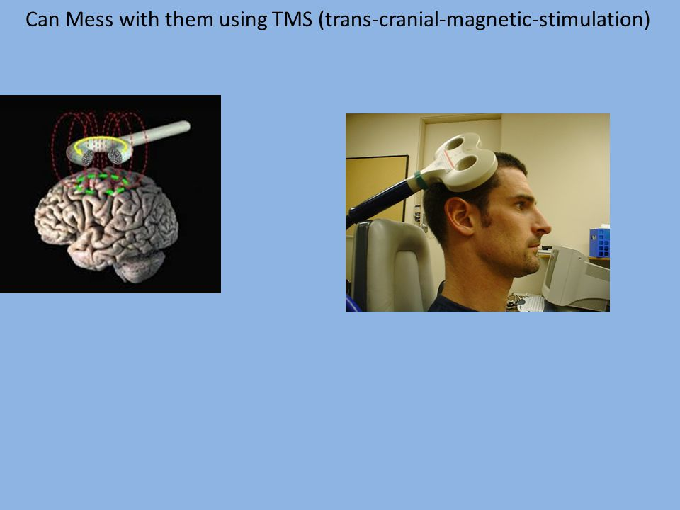 Can Mess with them using TMS (trans-cranial-magnetic-stimulation)