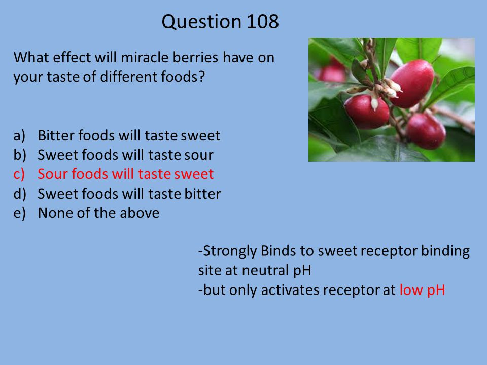 Question 108 What effect will miracle berries have on your taste of different foods Bitter foods will taste sweet.
