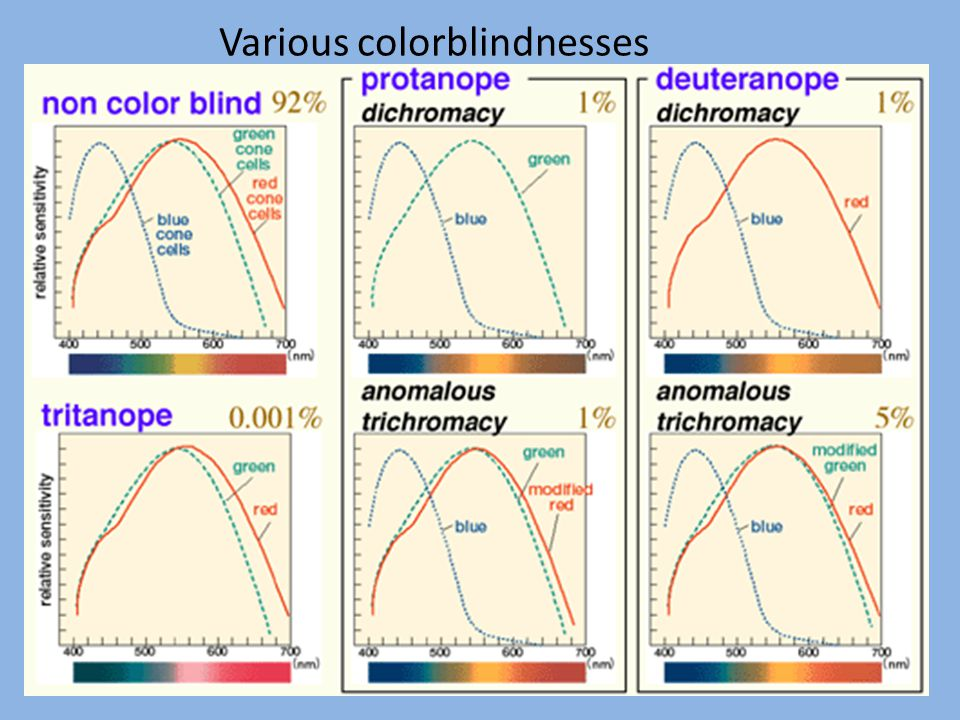 Various colorblindnesses