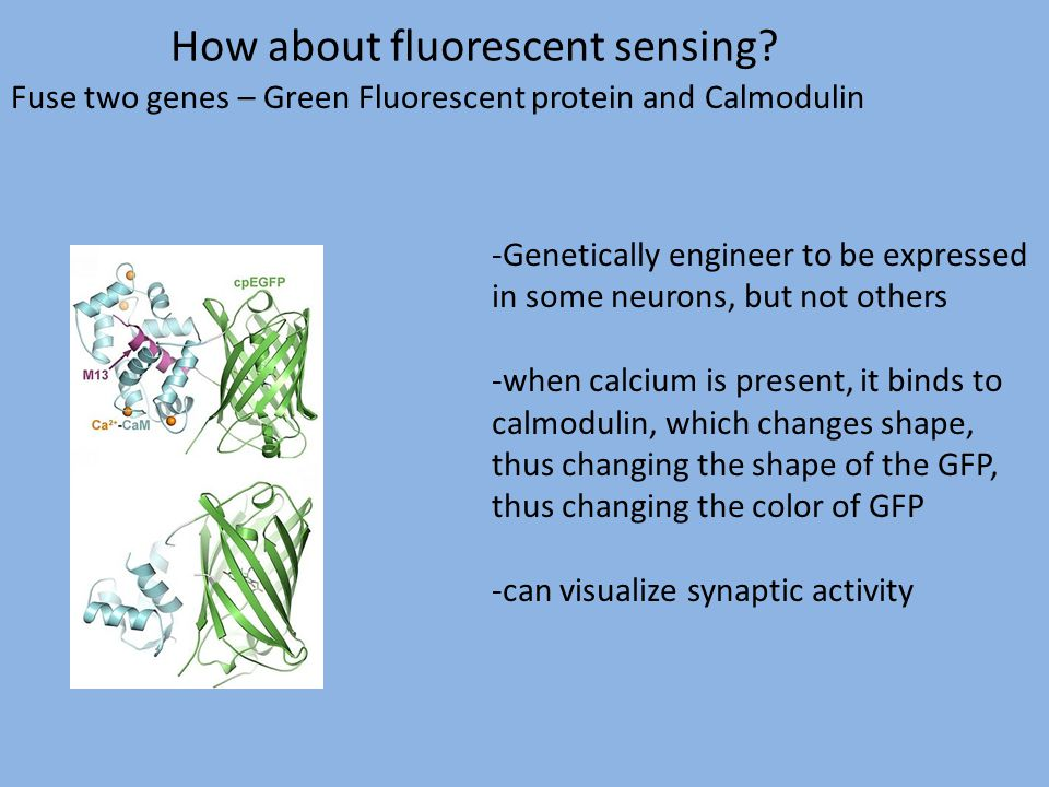 How about fluorescent sensing