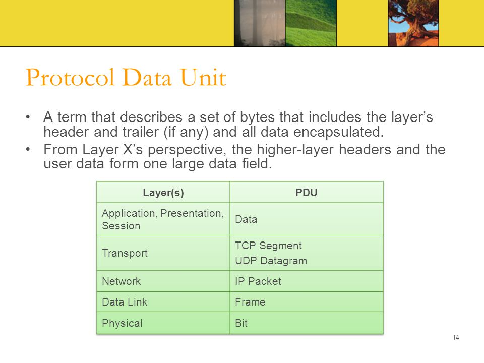Protocol Data Unit A term that describes a set of bytes that includes the layer's header and trailer (if any) and all data encapsulated.
