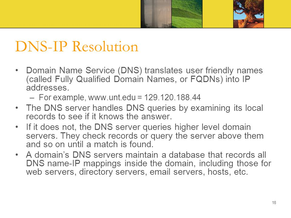 DNS-IP Resolution Domain Name Service (DNS) translates user friendly names (called Fully Qualified Domain Names, or FQDNs) into IP addresses.