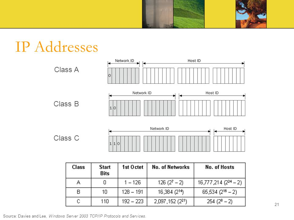IP Addresses Class A Class B Class C
