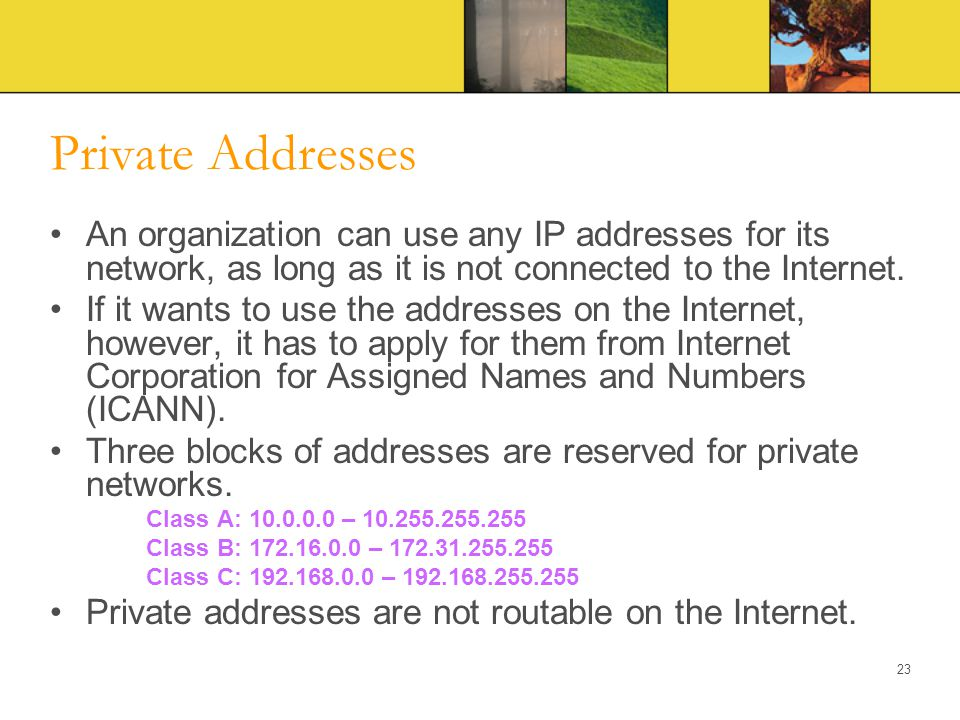 Private Addresses An organization can use any IP addresses for its network, as long as it is not connected to the Internet.