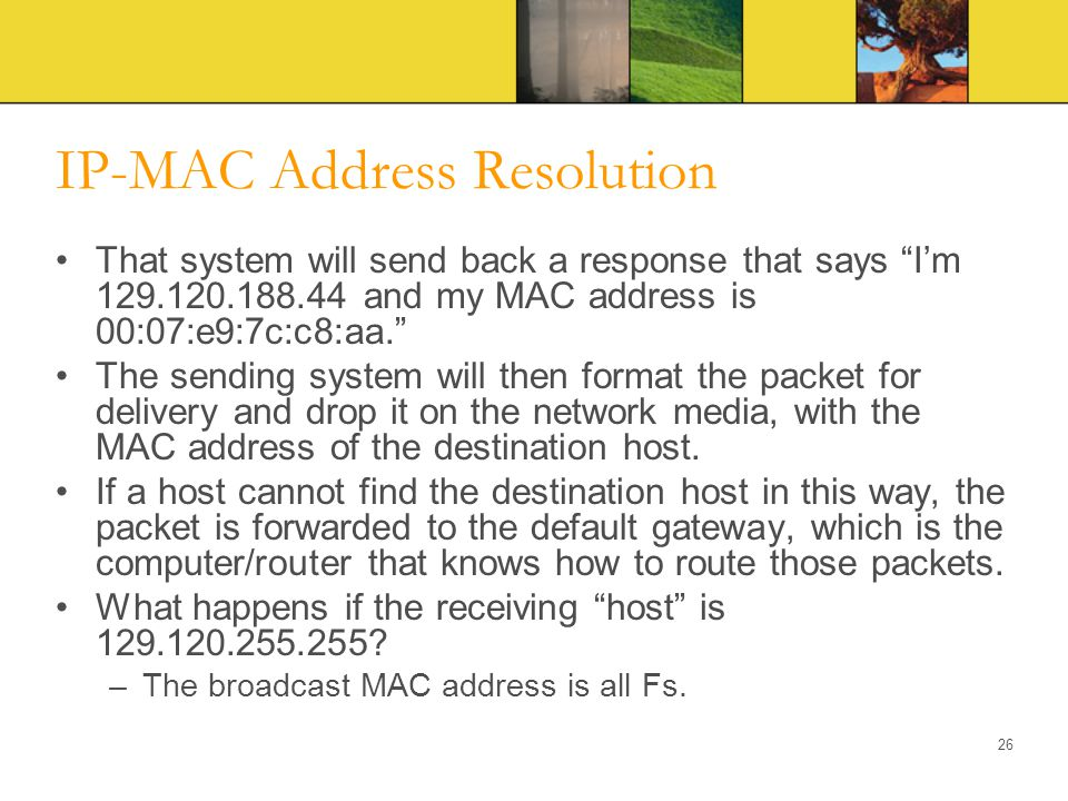 IP-MAC Address Resolution