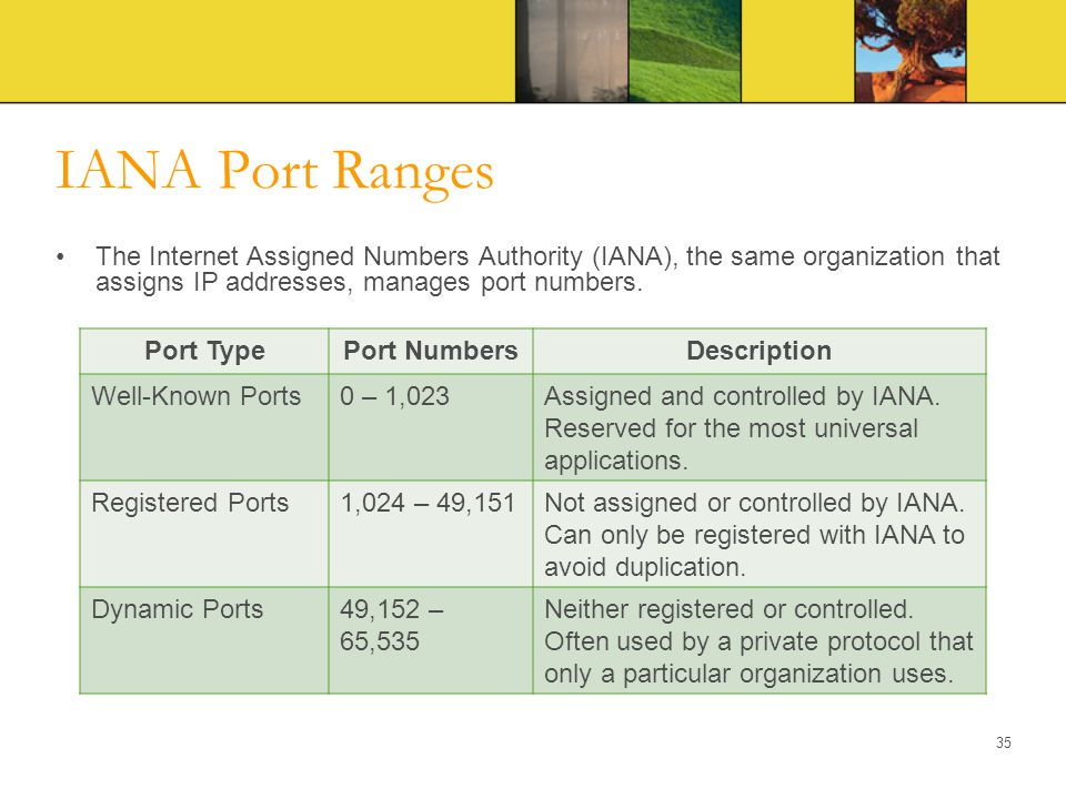 IANA Port Ranges The Internet Assigned Numbers Authority (IANA), the same organization that assigns IP addresses, manages port numbers.