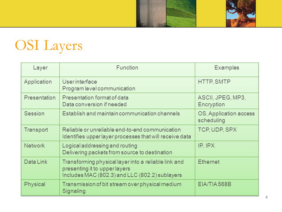 OSI Layers Layer Function Examples Application User interface