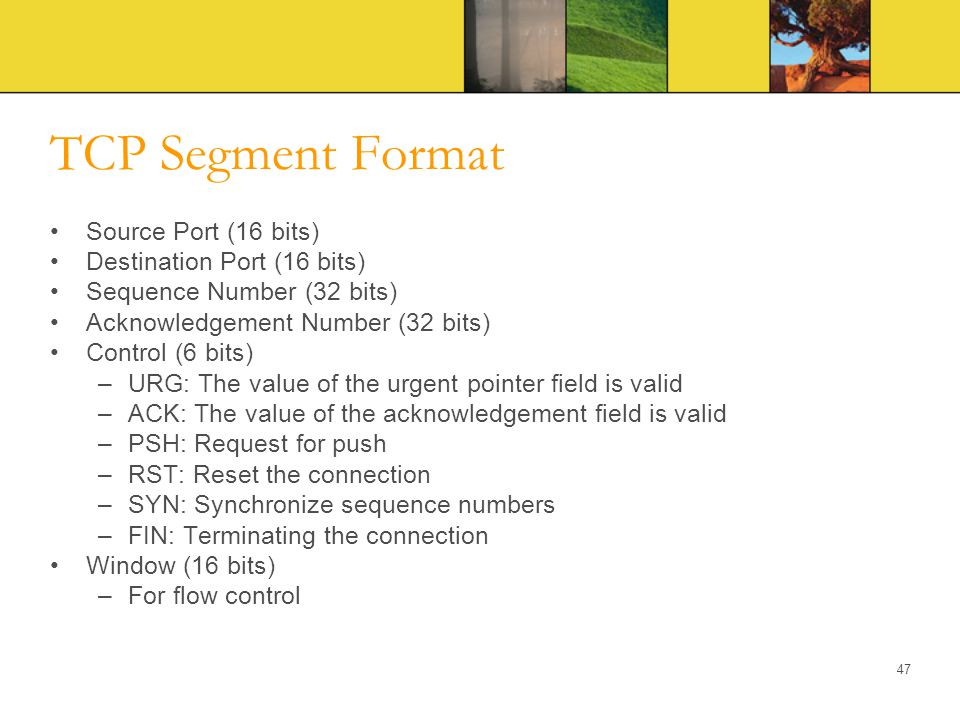 TCP Segment Format Source Port (16 bits) Destination Port (16 bits)
