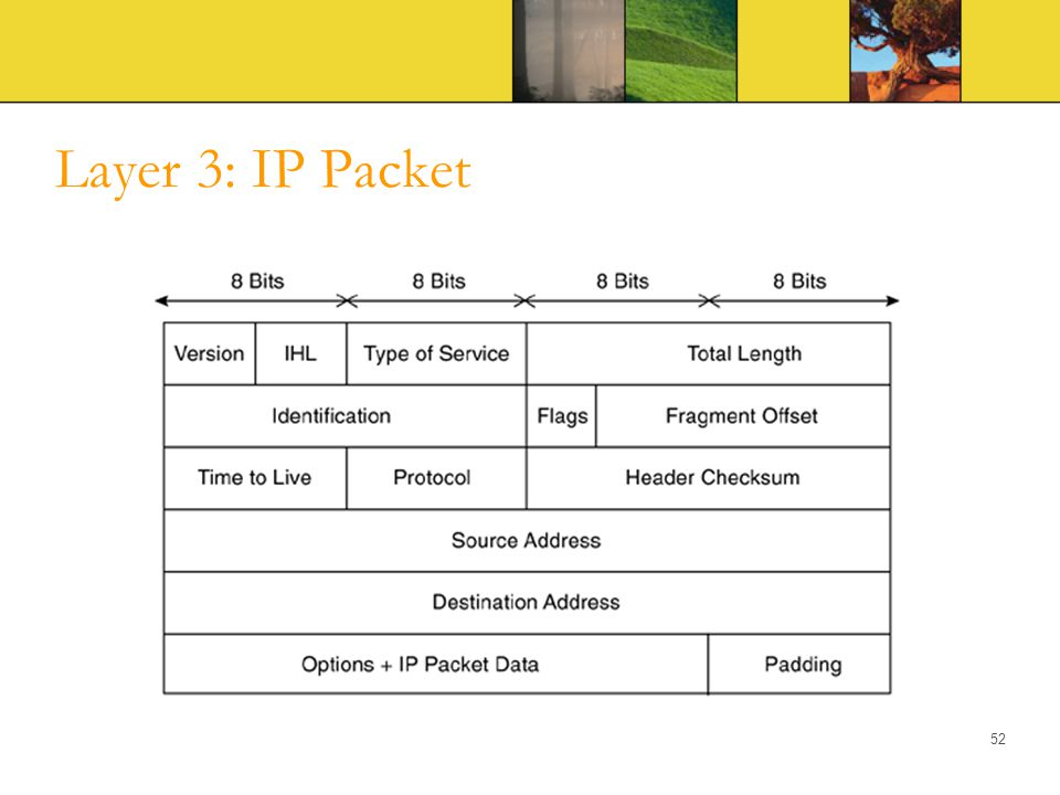 Layer 3: IP Packet