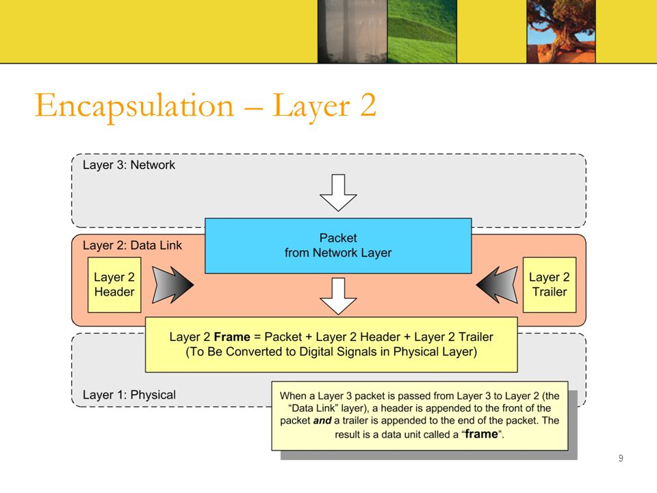 Encapsulation – Layer 2