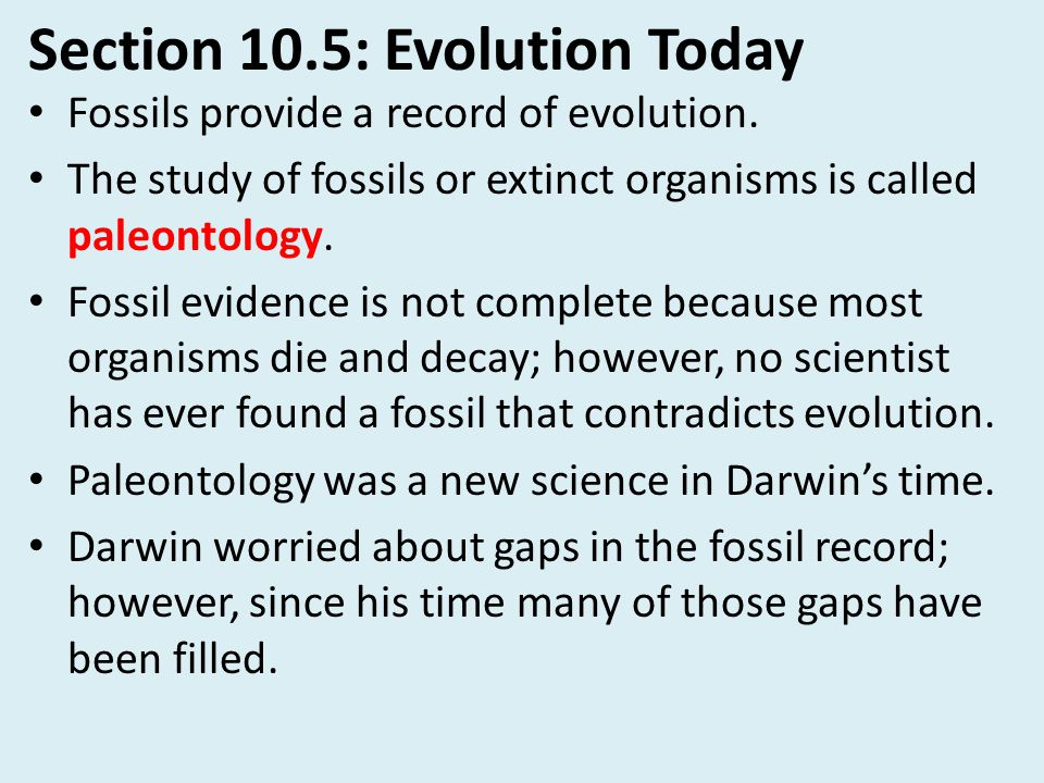Section 10.5: Evolution Today
