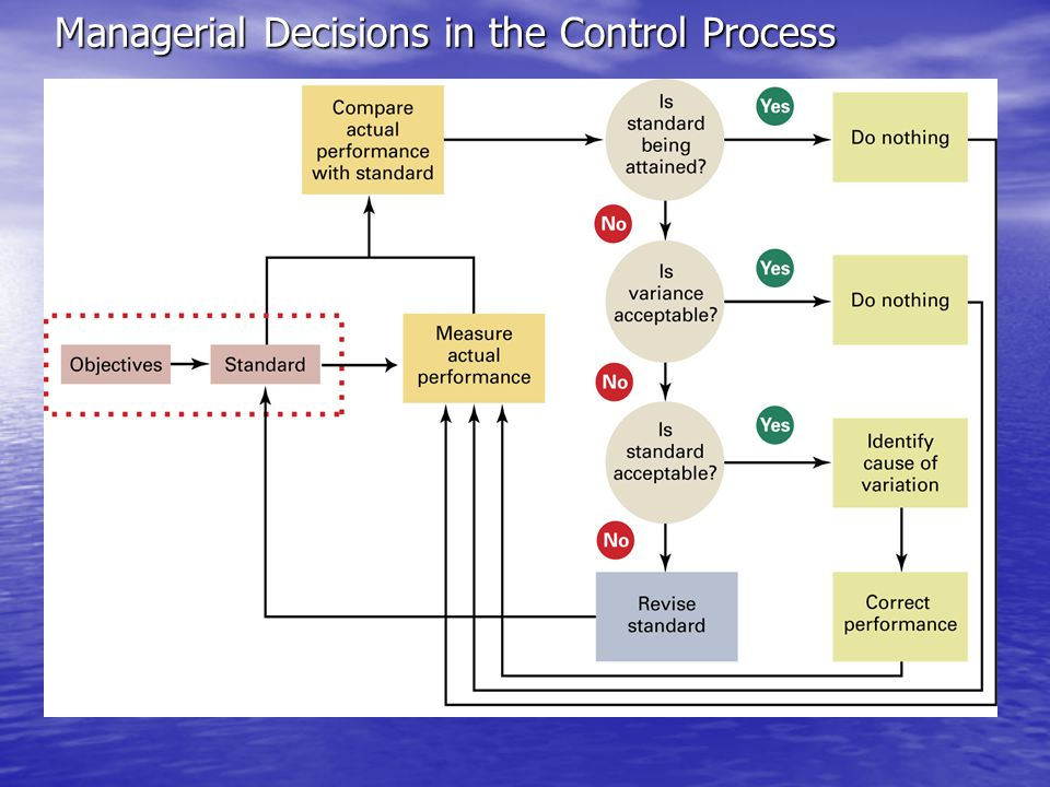Managerial Decisions in the Control Process
