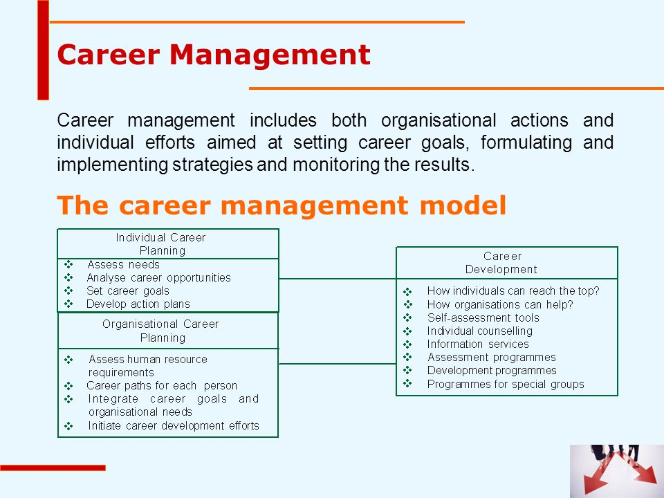 Career Management The career management model
