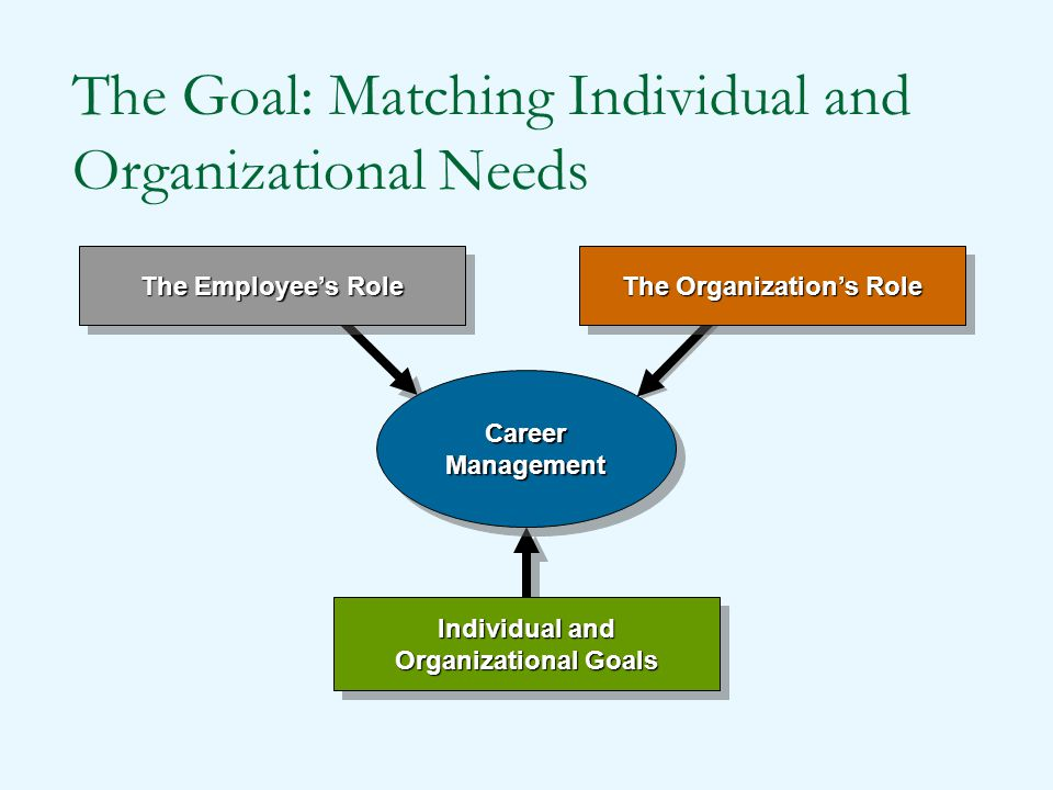 The Goal: Matching Individual and Organizational Needs