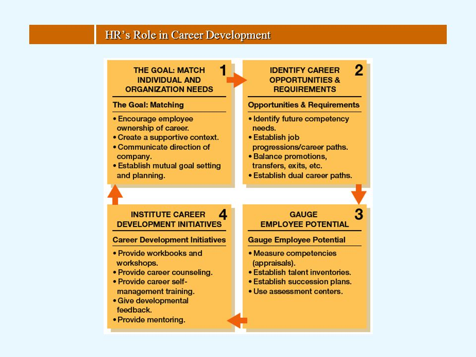 HR's Role in Career Development