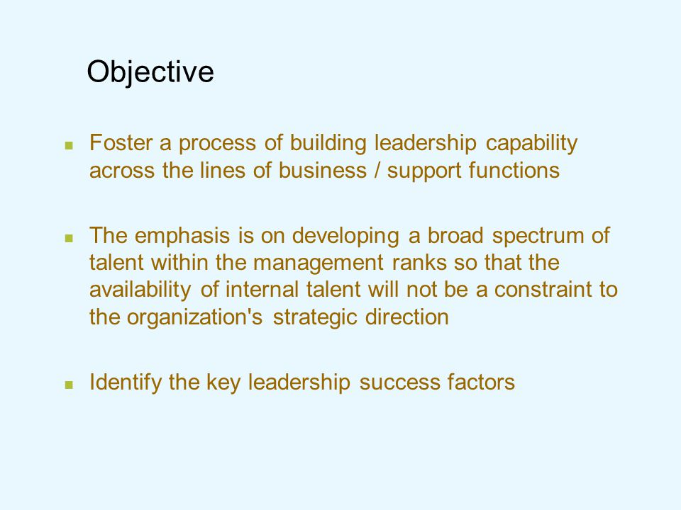 Objective Foster a process of building leadership capability across the lines of business / support functions.