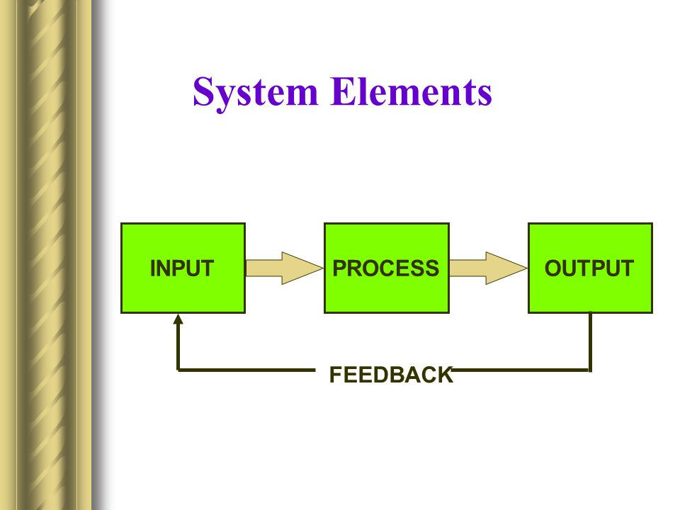 System Elements INPUT OUTPUT PROCESS FEEDBACK