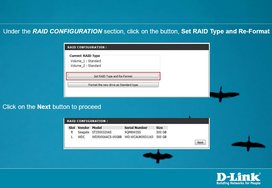 Under the RAID CONFIGURATION section, click on the button, Set RAID Type and Re-Format