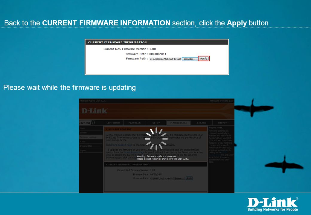 Back to the CURRENT FIRMWARE INFORMATION section, click the Apply button