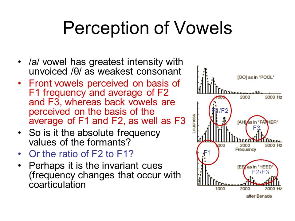 Perception of Vowels /a/ vowel has greatest intensity with unvoiced /θ/ as weakest consonant.