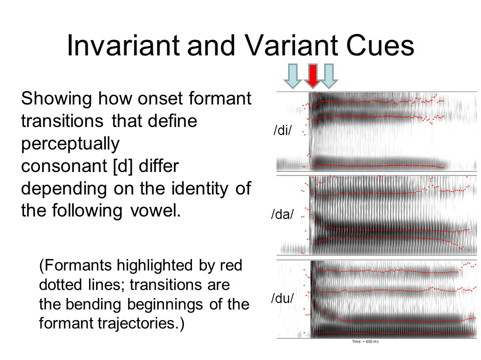Invariant and Variant Cues