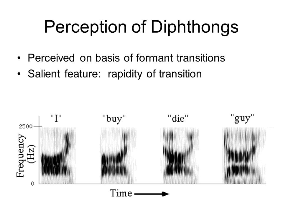 Perception of Diphthongs